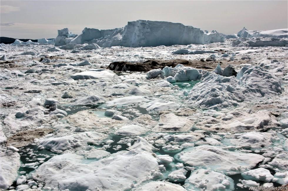 ilulissat-banc-icebergs-1000px